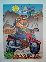 Sveska A6 TP LUX Garfield